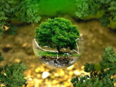 Le traitement des déchets du BTP : un enjeu pour l'avenir!