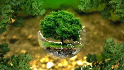 environmental-protection-326923_640-v2.jpg