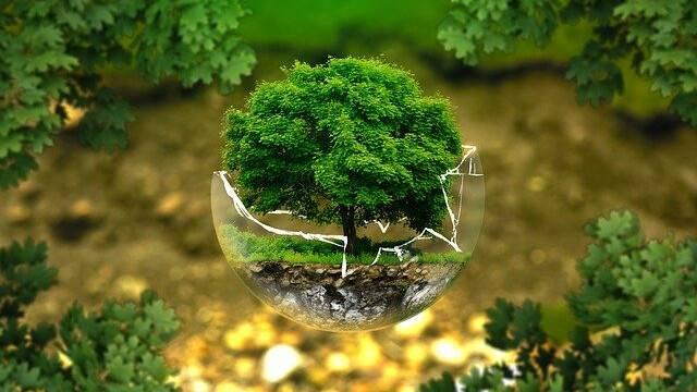environmental-protection-326923_640.jpg