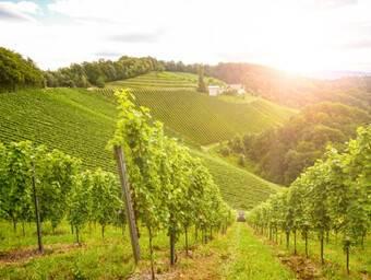 Bourgogne-Franche Comté