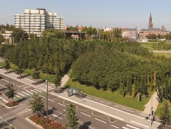 Investir dans le neuf à Strasbourg